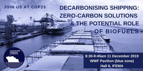 Decarbonising shipping: Zero-carbon solutions and the role of biofuels tickets
