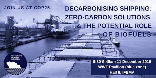 Decarbonising shipping: Zero-carbon solutions and the role of biofuels