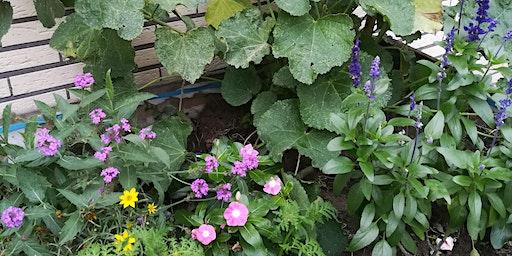 Workshop: Wat plant ik in mijn bloembakken?