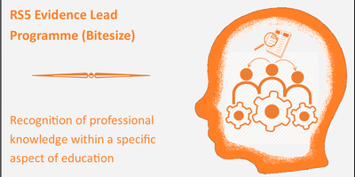 RS5: Bitesize: Evidence Lead Programme: supplementing expertise with evidence