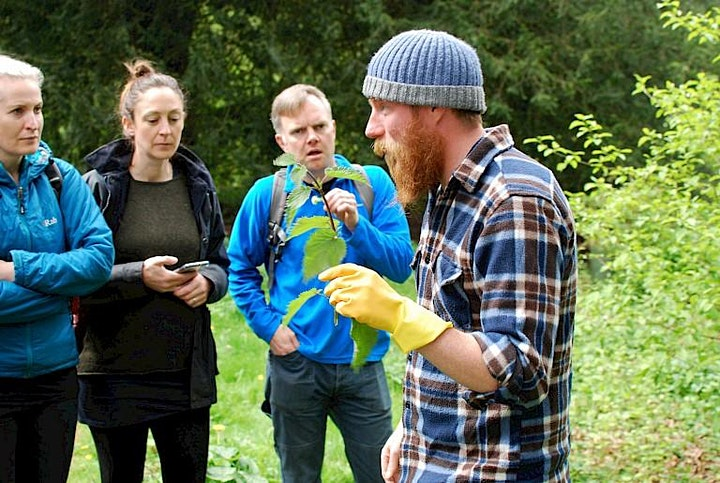 Wild Food Foraging POSTPONED, NEW DATE TBC image