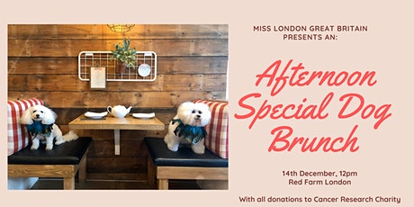 Miss London Great Britain presents an Afternoon Special Dog Brunch tickets