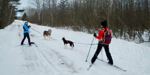 Learn to Classic Ski Clinic