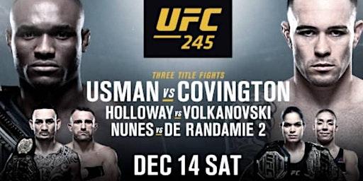 UFC245: