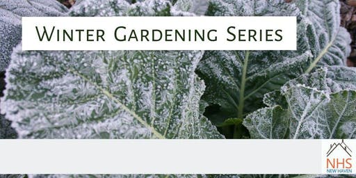 Winter Gardening Series 2020