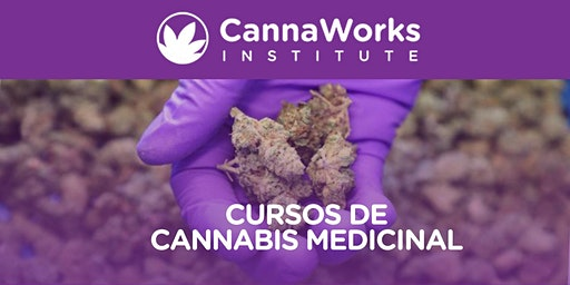 Cannabis Training Camp | CannaWorks Institute