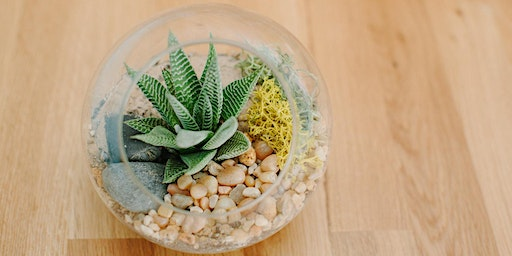 Complimentary Terrarium Workshop With Jungle & Loom at The Wharf