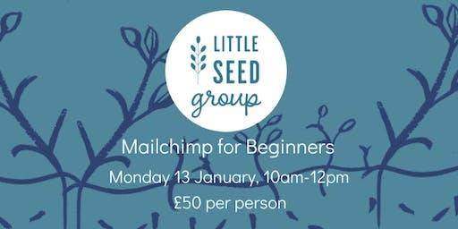 Mailchimp for Beginners Workshop