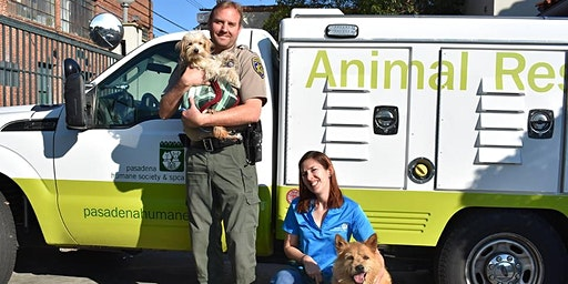 Animal Adventurers Workshop: Careers in Dog Care (Kids 8-12)