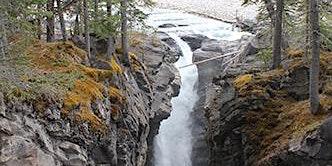 Beginner Guided Hike- Siffleur Falls (Nordegg area)