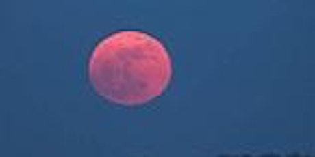 Full Moon Photo Shoot at Riverside Cemetery tickets