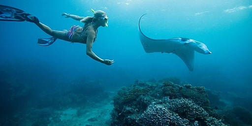 Key West Florida Ocean Adventure & Spa Retreat 