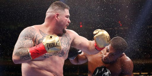 ANDY RUIZ v. ANTHONY JOSHUA II