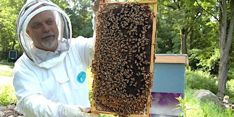 Beginning Beekeeping tickets