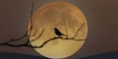 Full Moon Photo Shoot at Fairmount Cemetery