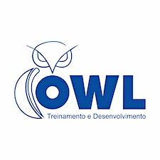 OWL TREINAMENTO E DESENVOLVIMENTO logo