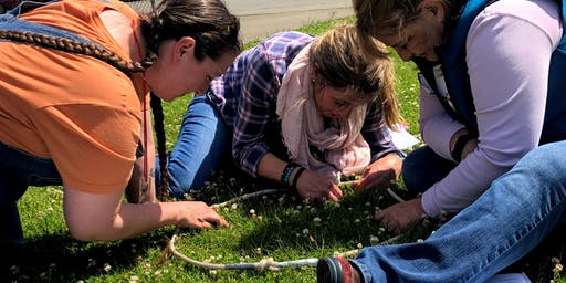 NGSS in Action: Science in your Schoolyard (Eatonville)