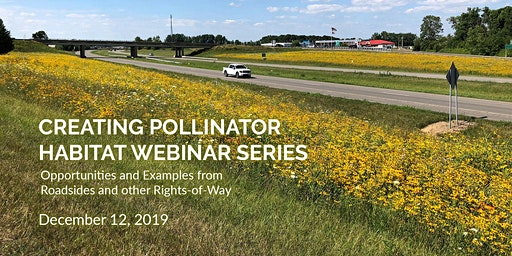 Creating Pollinator Habitat: Opportunities and Examples from Roadsides and other Rights-of-Way