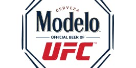 Modelo Fight Night
