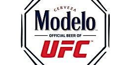 Modelo Fight Night