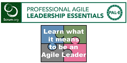 Professional Agile Leadership - Essentials - Boston - December 2019