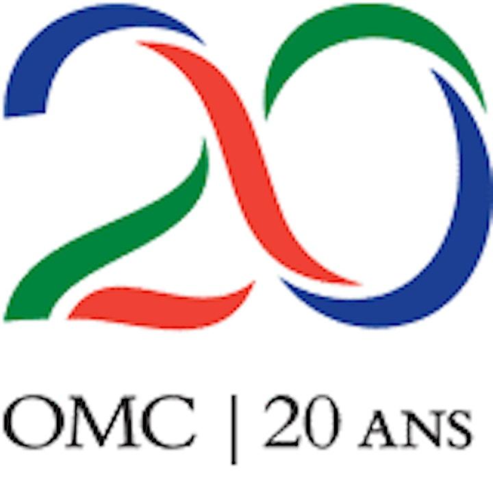 Image pour L'AFRIQUE  ET LE SYSTEME DE REGLEMENT DES DIFFERENDS DE L'OMC : DEFIS