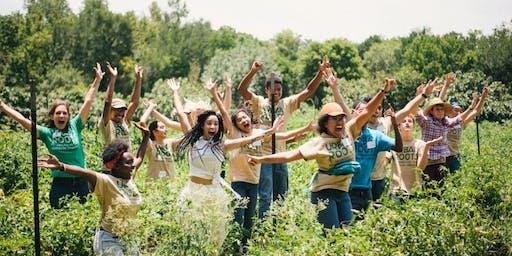 Volunteer at the Urban Roots Farm