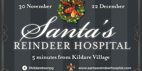 Santa's Reindeer Hospital (Weekday Tickets) tickets