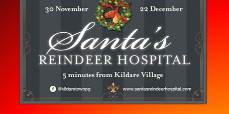 Santa's Reindeer Hospital (Weekend Tickets) tickets