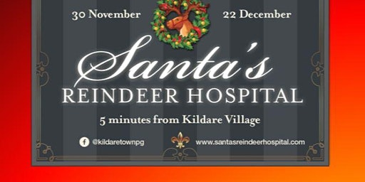 Santa's Reindeer Hospital (Weekend Tickets)