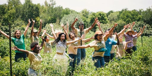 Volunteer at the Urban Roots Farm