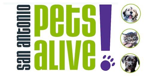 SA Pets Alive Dog & Cat Volunteer Event