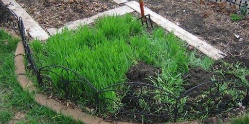 Soil & Nutrient Management in Vegetable Gardens