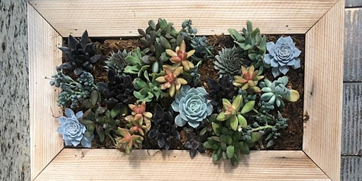 Girl's Night Out - Vertical Succulent Planters