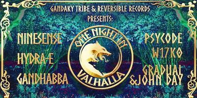 One Night In Valhalla