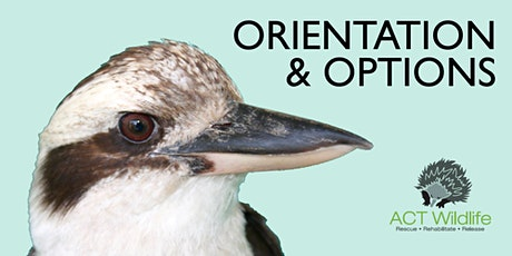Orientation - ACT Wildlife tickets