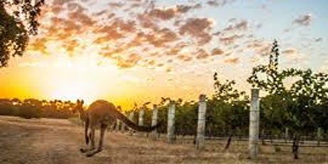 VINcabulary : Wines of the South - South Africa, South America, and Australia tickets