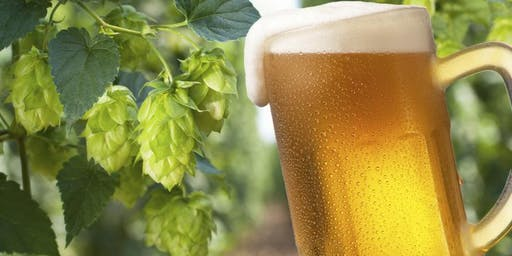 It's All About the Hops : Hoppy & Hazy Beers