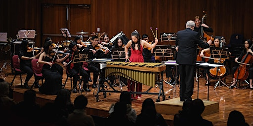 2020 UNSW Concerto Competition Auditions