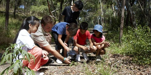 Junior Rangers Bush Craft - Buchan Caves Reserve