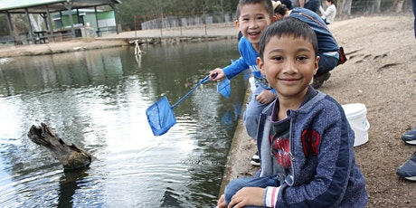Junior Rangers Minibeast Discovery - Morwell National Park  tickets