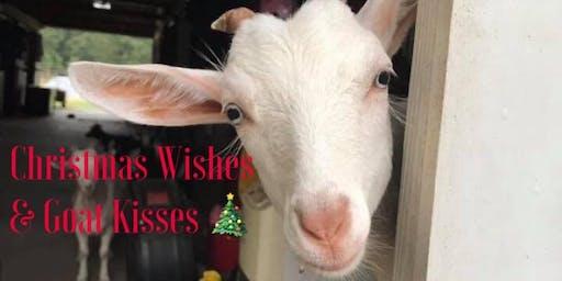 Christmas Wishes & Goat Kisses 2019