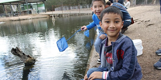Junior Rangers Minibeast Discovery - Heyfield Wetlands Centre