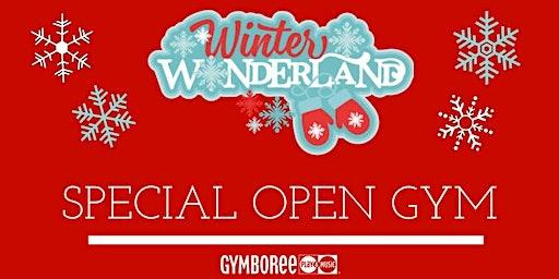 Kid Winter Wonderland Gymboree Open Gym