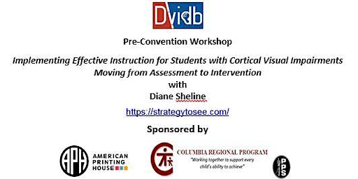 DVIDB Workshop with Diane Sheline - Cortical Visual Impairments