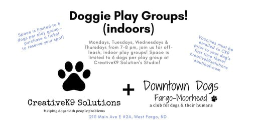 Downtown Dogs @ CreativeK9 Solutions - Private meet ups