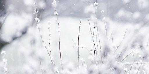 Winter Wonderland Workshop