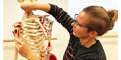 The Articulate Anatomy Shoulder, Arm & Hand 2020 tickets