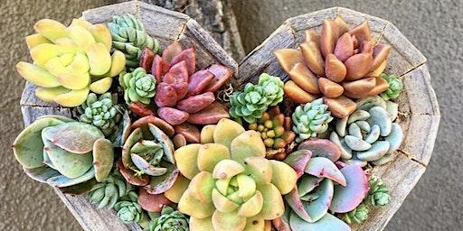 Heart Box Succulent Workshop
