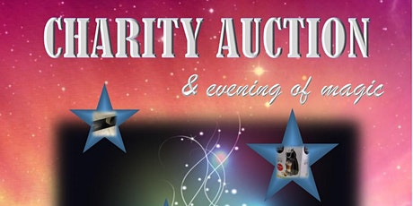 Fun Charity Auction Fundraiser & Evening of Magic (In Aid of 'Burton Hope') tickets